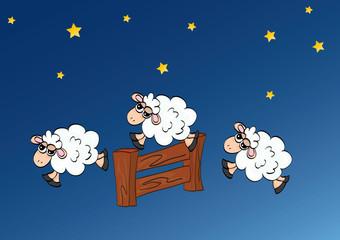 owce skaczące przez płot