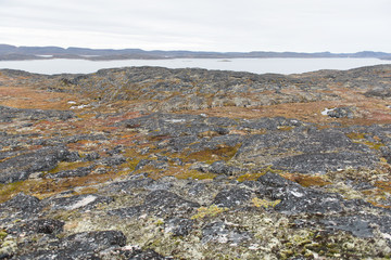 Arctic landscape around Aasiaat