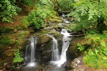 Waterfall in Killarney National Park, Ireland
