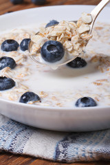 tasty breakfast of muesli with blueberries and milk vertical