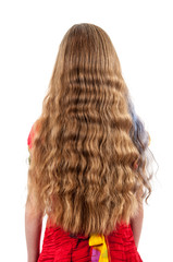 back of girl with beautiful long hair