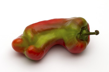 Giant sweet pepper ripening