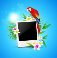 Background with red parrot and photo