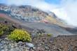 Haleakala crater with trails in Haleakala National Park on Maui
