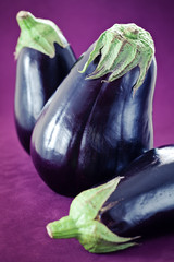 ripe eggplant on a violet background