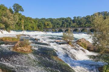 Rhine Falls in summer