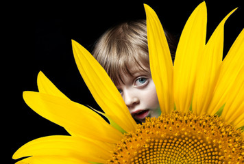 little girl portrait with sunflower