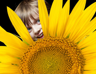 little girl looking out of a hole in a sunflower