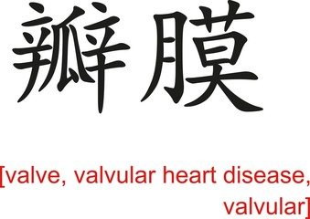 Chinese Sign for valve, valvular heart disease, valvular