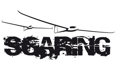 soaring_grunge