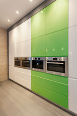 White and green modern kitchen