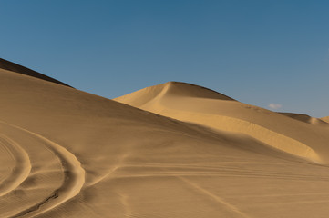 Arabian sand ripples