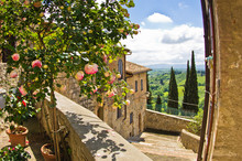 "Постер, картина, фотообои ""Roses at balcony in San Gimignano, Tuscany landscape background"""