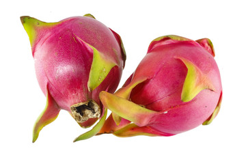 Dragon fruit (Hylocereus sp).