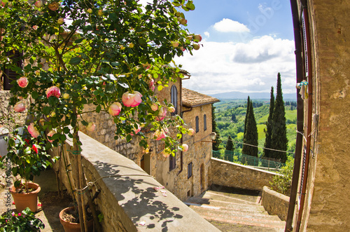 Roses at balcony in San Gimignano, Tuscany landscape background - 67610825