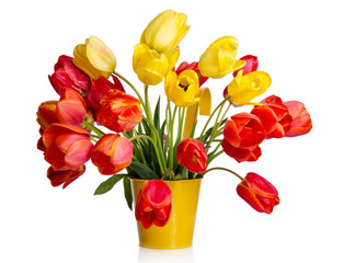 Beautiful bouquet of colorful tulips in yellow pot isolated on w