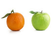 canvas print picture - Apple and Orange difference