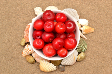 Plums and shells