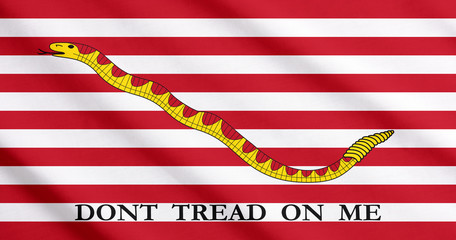 The First Navy Jack, historical flag