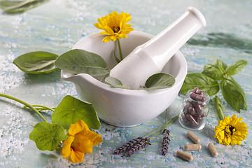 complements alimentaires à base de plante et fleurs médicinales