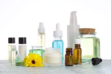 Concept de cosmétiques naturelles à base de plantes