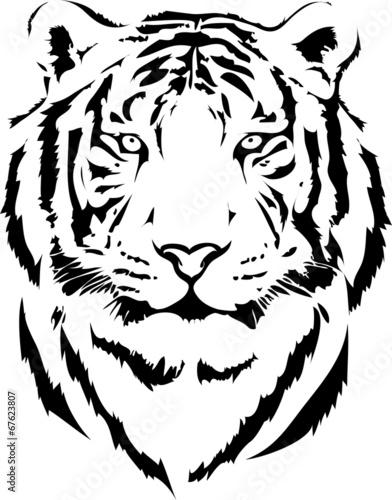 Fototapeta tiger head in black interpretation 2