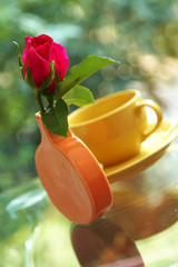 rose in ceramic vase on glass table