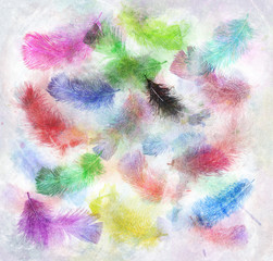 Watercolor Image Of  Feathers