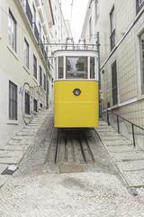 Lisbon Street tram