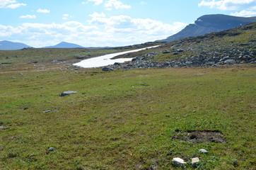 Scientific plot in subarctic mountain tundra in Swedish Lapland
