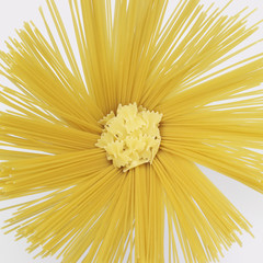 radial spaghetti and farfalle