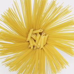 radial spaghetti and penne