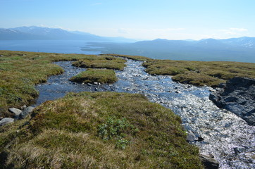melting water in subarctic mountain tundra, Nuolja, Abisko