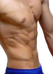 torso o young man