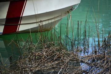 Juncos y Bote sobre el lago