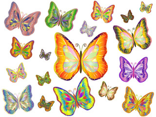 Vector tropical butterflies