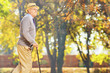 canvas print picture - Senior gentleman walking with a cane in park