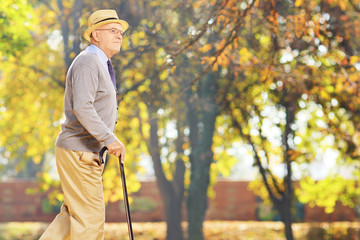 Senior gentleman walking with a cane in park