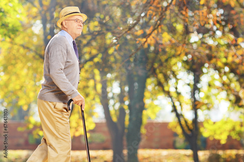 canvas print picture Senior gentleman walking with a cane in park
