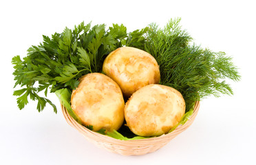 Fresh potatoes and green dill and parsley isolated over white