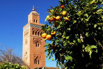 Maroc 5