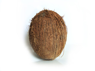 A whole coconut on white background with copy space.