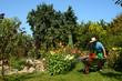 Garten 234