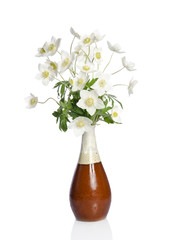 Beautiful bouquet of white flowers in a ceramic vase isolated on