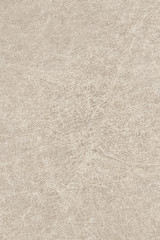 Antique Parchment Off-White Grunge Texture