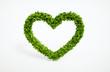 ecology heart symbol - 67660289