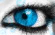 Das Fenster in vollem Blau