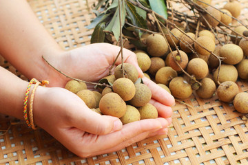 Longan fruit in the basket