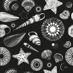 Vector Seamless pattern with seashells (black and white)