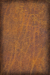 Old Cowhide Creased Exfoliated Crumpled Grunge Texture Sample -